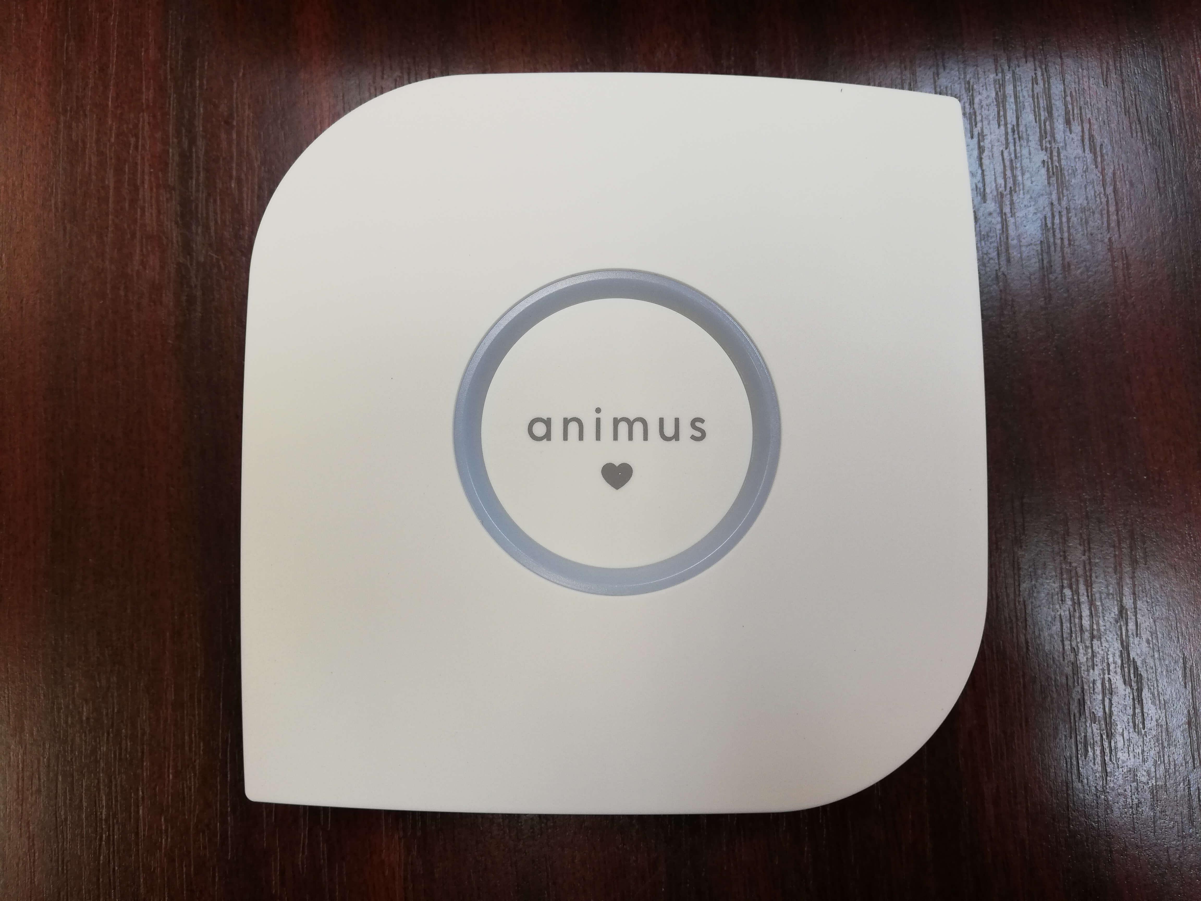 Animus Heart